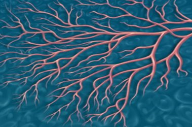 """Thumbnail image for """"Diabetes Complications: Small Blood Vessel Disease"""""""