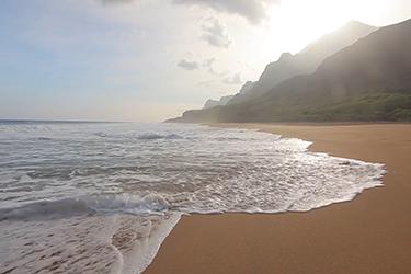 """Thumbnail image for """"Healing Hawaii"""""""