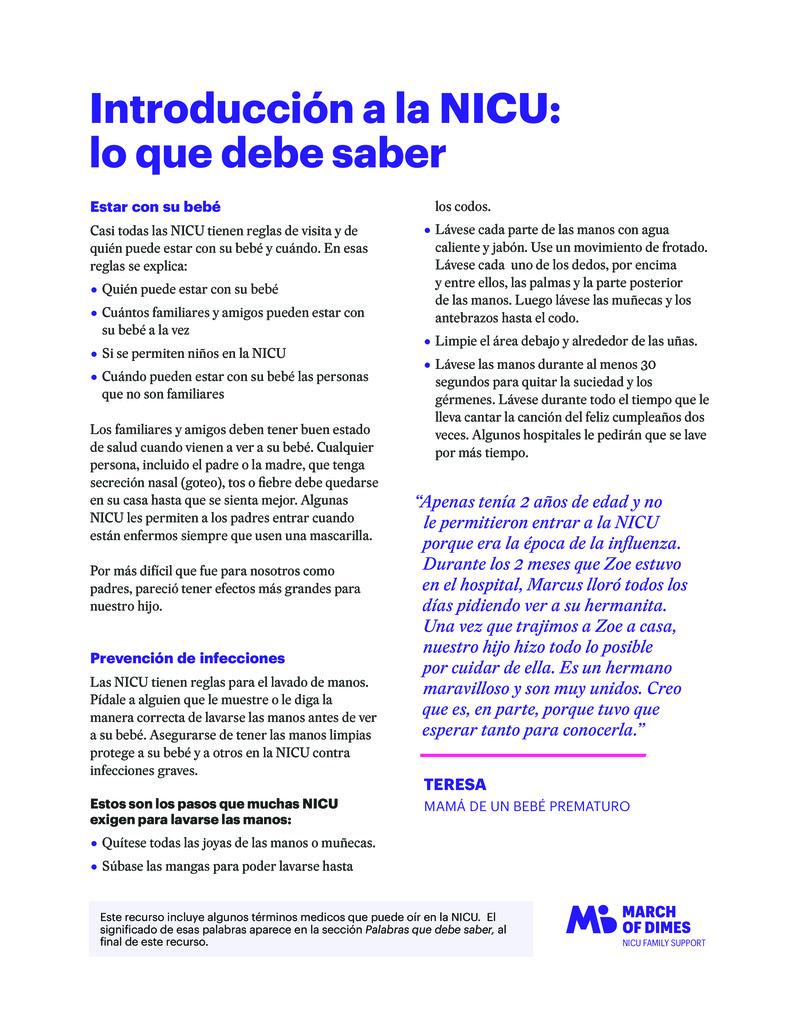 """Poster image for """"Introducción a la NICU: lo que debe saber"""""""