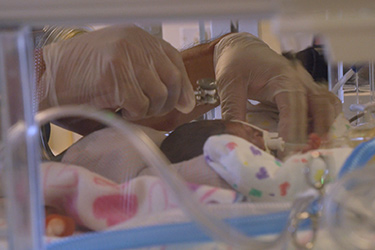 "Thumbnail image for ""Premature Newborn Care: Brain Basics"""