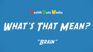 "Thumbnail image for ""Brain: What's That Mean?"""