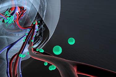"Thumbnail image for ""Vacunas para Adultos: Hepatitis B"""